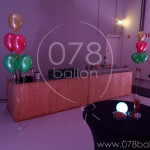 ballondecoratie-portfolio-32.jpg