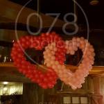 ballonnenharten08.jpg