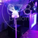 bruiloft-ballondecoratie-IMG_20170908_205744.jpg