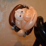 kado-ballonnen05.JPG