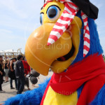 papegaai-mascotte-huren.JPG