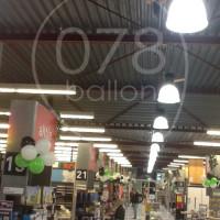 referenties-078ballon38.JPG