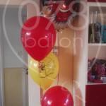 trossen-heliumballonnen09.jpg
